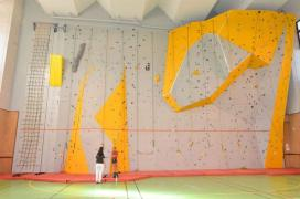 Training climbing wall